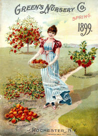 Seed Catalogue Cover 10